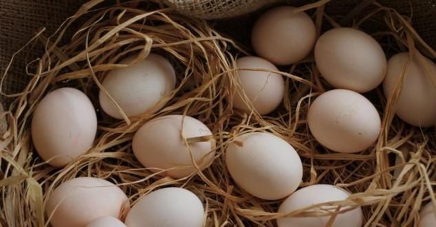 Köy Yumurtası