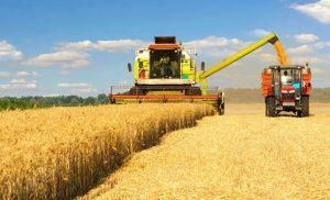 hasat-kredisi-nasıl-alınır