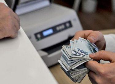 Devlet Destekleme Kredisi Veren Kamu Kuruluşları