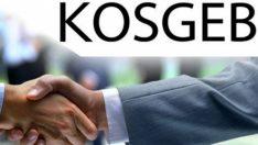 KOSGEB Nace Kodları ve Sınıflandırma