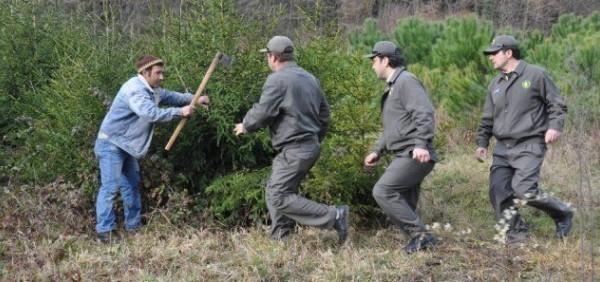 Tapulu Araziden Ormandan İzinsiz Ağaç Kesmenin Cezası Tarımsal Krediler