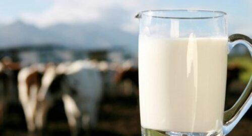 süt-parası-nedir